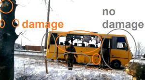 bus tree